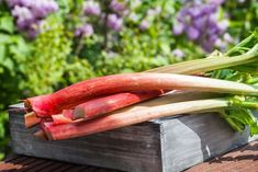 Ever tried rhubarb wine? It's even better than rhubarb beer. Follow along with this recipe for the best rhubarb wine ever.