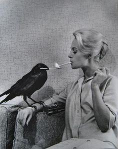 Tippi and bird.