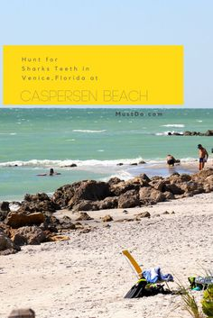 Casn Beach Venice Florida