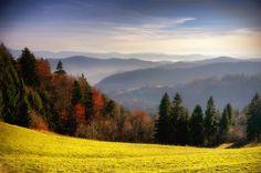 Misty morning by Karmesita  on 500px