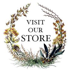 Shop Willow and Thatch Best Period Dramas, Period Drama Movies, Netflix Streaming, Netflix Movies, Amazon Prime Movies, Masterpiece Theater, Romantic Period, Romance Movies, Good Movies