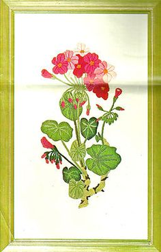 "Vintage Paragon Crewel Embroidery Kit ""Geranium"" by Diantha Fielding 
