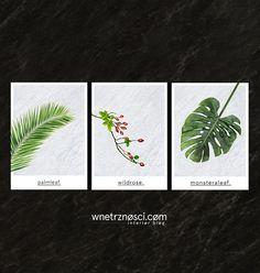 Kolor przewodni we wnętrzach: zielony – wnetrznosci.com