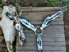 teal horse bridle - Google Search