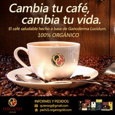 Cambia tu café, cambia tu vida! Prueba los productos saludables #OrganoGold. Café, té y chocolate 100% ORGÁNICOS hechos a base de Ganoderma Lucidum, conocido como el Rey de las Hierbas Milagrosas.  Informes y pedidos:  Massachusetts, USA Radouane Jamouq, Distribuidor Independiente Email: rjamouq.organogold@gmail.com  Sitio Web: www.radouanejamouq.myorganogold.com  Organo Gold es una compañía global de mercadeo en una misión de difundir el conocimiento de Ganoderma en el mundo entero. Para…
