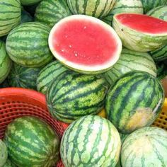 How to Pick the BEST Watermelon  Picking The Best Watermelon, How to Grow Watermelon, Watermelon Picking Tips, Popular Pin