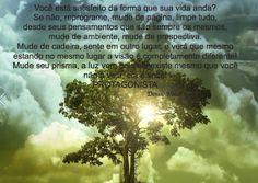 Denise Mucci: Você esta satifeito com sua vida?http://denisemucci2015.blogspot.com.br/2015/11/voce-esta-satifeito-com-sua-vida.html