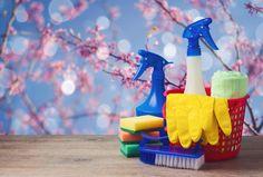 Der Frühling ist die beste Zeit, um die Wohnung gründlich auszumisten und zu putzen. Wir haben eine hilfreiche Checkliste für den Frühjahrsputz.