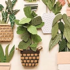 My favorite kind of fiddle leaf fig plant – the paper type – so I can't kill it 😂 📷 by: Handmade Shop, Handmade Gifts, Fiddle Leaf Fig, Paper Artist, Paper Cutting, House Plants, Paper Flowers, Plant Leaves, Floral Design