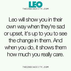 Leo Leo Virgo Cusp, Leo Horoscope, Horoscopes, Astrology Leo, Aquarius, Leo Quotes, Qoutes, Zodiac Quotes, Quotes Quotes
