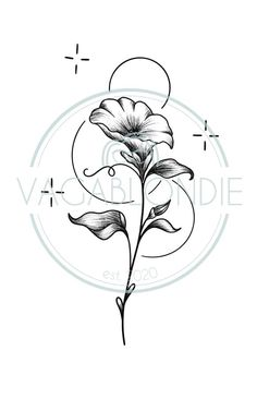 Chinese Alphabet Letters, September Birth Flower, My Account Page, Birth Flowers, Local Artists, How To Draw Hands, Hand Drawn, Pdf, Tattoo