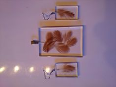 Federn in Resin Diy Schmuck, Wall Lights, Home Decor, Feathers, Homemade Home Decor, Appliques, Decoration Home, Interior Decorating