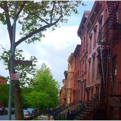 Noble St. Greenpoint. Brooklyn, NY my fav street