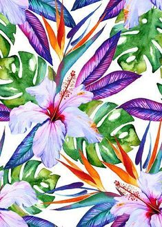 watercolor seamless tropical pattern with hibiscus strelizia,… seamless exotic floral pattern. royalty-free seamless exotic floral pattern stock vector art & more images of tropical pattern Watercolor Pattern, Watercolor Flowers, Watercolor Paintings, Exotic Flowers, Tropical Flowers, Illustration Blume, Tropical Wallpaper, Tropical Art, Tropical Pattern