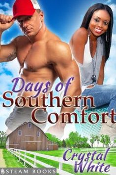 Detour - Sexy Interracial BWWM Erotic Romance from Steam Books