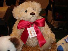 Jasper at Telford Teddy Bear Fair, UK