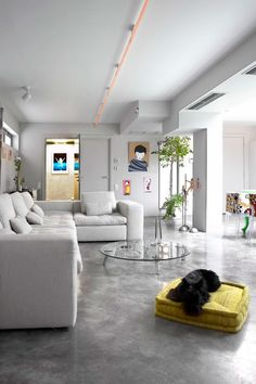 A polished concrete flооr adds sophistication and chic to modern interior design Garage Transformation, Home Interior, Living Room Interior, Transformer Un Garage, Polished Concrete, Deco Design, Design Trends, Home And Living, Contemporary Design
