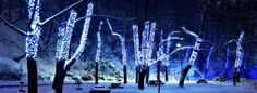 facebook timeline cover Beautiful Dark Winter Night HD Nature/Winter,Free,download,hdwallpapers,Beautiful,dark,Winter,Night