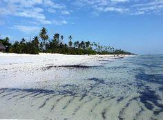 Zanzibar. A beautiful, remote island off of Tanzania.