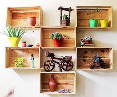 Plantas na casa da Leyla e 10 boas ideias para seus vasos (via Bloglovin.com )