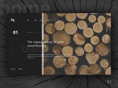 TQ - Homepage Animation