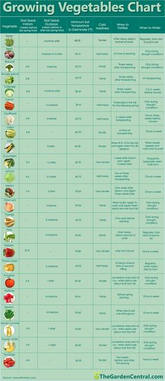 Growing veggies chart.