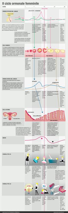 Il ciclo ormonale femminile
