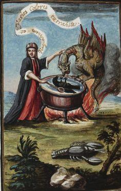 Beinecke Rare Book and Manuscript Library, Mellon MS 131, f. 80r. Federico Gualdi. [Alchemical miscellany] Philosophia hermetica. Compendiolum de praeparatione auri potabilis veri. c.1790.