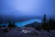 Hey, I found this really awesome Etsy listing at https://www.etsy.com/ca/listing/601881719/peyto-fog