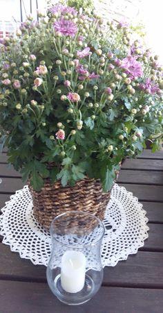 MyLoVely August Garden. Flowers&Candles. ENJOY&Like. U? SMILE