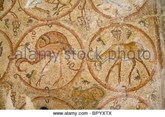 Photograph of a mosaic floor in the ancient synagogue of Ma'on Nirim in the western Negev - Stock Photo