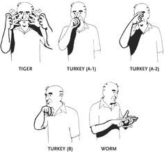 American Sign Language animals | be signed by combining ... - photo#8