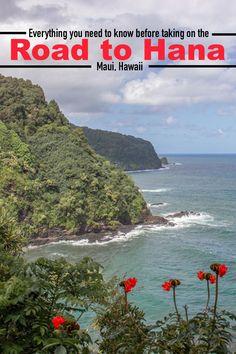 Maui Travel, Travel Usa, Travel Articles, Travel Tips, Trip To Maui, Road To Hana, Group Travel, Amazing Destinations, Adventure Travel