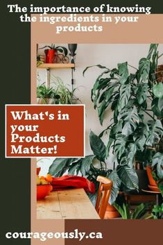 What's in Your Products I Need To Know, Knowledge Is Power, Home Schooling, Our Body, Bodies, About Me Blog, Parenting, Bring It On, Group