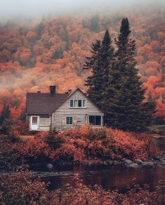 Cabin goals in Parc national de la Jacques-Cartier, Canada Parc National, National Parks, Jacques Cartier, Cabin In The Woods, Autumn Cozy, Dark Autumn, Autumn Nature, Autumn Aesthetic, Aesthetic Dark