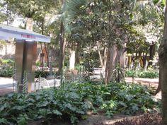 Zona de lectura en el jardín sonoro. Aquí puedes pedir prestado un libro o leerlo en la tranquilidad del jardín.