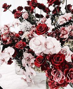 ♕♡❁ Belja06 ♕♡❁ ------Pinterest------