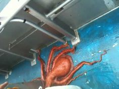 This Octopus Can Fit Into Any Wedding Dress