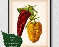 Impresión de vegetales médula arte de cocina cocina cartel
