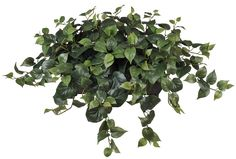 House of Silk Flowers Artificial Philo Ledge Plant >>> Details can be found by clicking on the image.