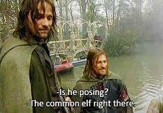 "(gif) Haha! ""The common elf right there."""