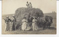 Hay wagon with men and women workers