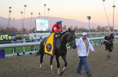 Brian Hernandez gives Fort Larned a huge pat after winning the Breeders' Cup Classic. It was Hernandez's birthday that day - bet it was a memorable one!