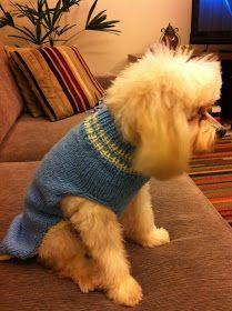 Koisas da Kaká: PAP - Roupinha para cachorro Knitted Dog Sweater Pattern, Dog Coat Pattern, Knit Dog Sweater, Dog Clothes Patterns, Coat Patterns, Knit Baby Booties, Pet Fashion, Dog Dresses, Dog Coats