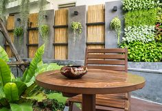 Gorgeous garden wall creates a private backyard retreat #outdoorliving www.az-homeconnection.com