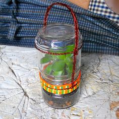 If you have a desire to carry your favorite plant with you, then this portable terrarium is for you. I have come up with a very convenient and easy-to-make terrarium. All you need are two jars with lids and wire. I used copper wire from an old transformer. Mini Plants, Copper Wire, Drink Bottles, Terrarium, Transformers, Fun Crafts, Jars, Craft Projects, Terrariums