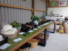 Bangors Organic, Cornwall. Homegrown kale, chard, cauli, cabbage, courgettes, French beans, mangetout, cucumbers, onions, shallots, garlic, elephant garlic, salad onions, salad bags, duck eggs, rhubarb and new potatoes http://www.organicholidays.co.uk/at/1206.htm