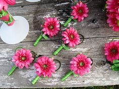 Simple and sweet hot pink mini gerbera daisy boutonnieres. Gerbera Wedding, Wedding Bouquets, Wedding Flowers, Gerbera Daisy Bouquet, Pink Gerbera, Friend Wedding, Our Wedding, Dream Wedding, Daisy Boutonniere