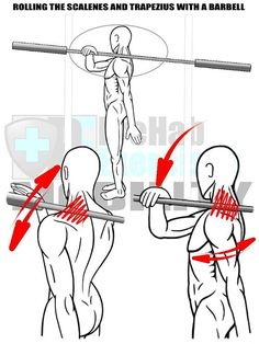 Roll out the Trapz with a Barbell to improve Shoulder Mobility and increase Range of Motion in Overhead Movement Patterns. #PreHabExercises Benefits: Increases the Range of Motion in the Thoracic and Cervical Spines (Torso/Neck) and Shoulders. Improves the Mobility and Integration of the Torso Neck and Shoulder which increases mechanical efficiency in force transfer through the body. Also assists in improving Throwing Pushing Pulling Rowing and Overhead movements. Helps to correct Forwar...