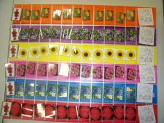 Voici un jeu fabriqué pour travailler la reconnaissance des chiffres et le dénombrement avec les PS . Le petit chaperon rouge rejoint la maison de sa grand-mère en ramassant des fleurs (1-2 ou3 suivant le nombre ou la constellation indiquée par le dé). Ce jeu pourra évoluer avec un loup sur le dé qui obligera à remettre une fleur. Le jeu est construit avec des photos plastifiées et des scratchs sur un fond à la peinture acrylique.